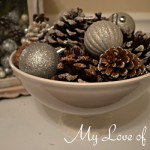 """""""Frosted Pine Cone Display"""""""