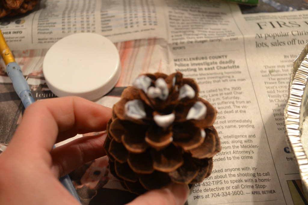 Mod Podge row of pinecone 1024x682 DIY Frosted Pine Cones